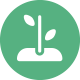 OUR BEGINNINGS